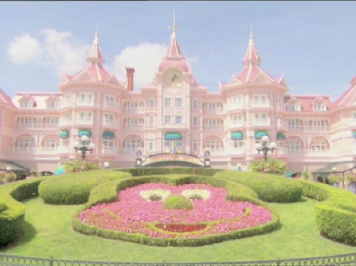 Disneyland support
